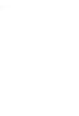Diyshow_white__logo