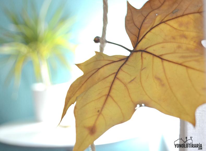 DIY guirnalda hojas secas